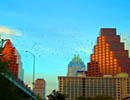 austin_s%20batty%20skyline%20-%208x10%20-%20dscf1454_edited-4.jpg