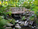 north%20woods%20footbridge.jpg